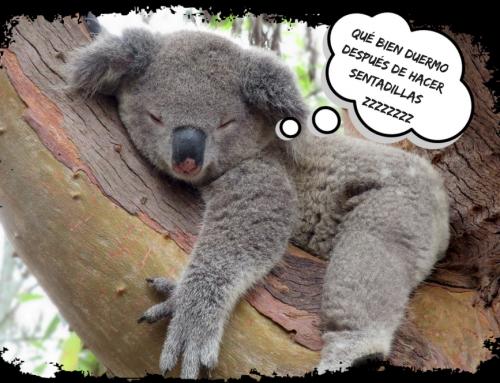 Qué ocurre cuando no duermes lo suficiente y cómo remediarlo