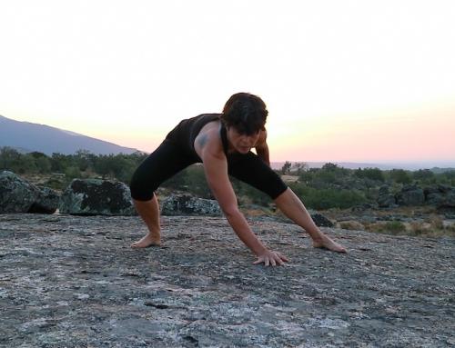 El trabajo de campo me ha enseñado más sobre entrenamiento físico que años en deportes de competición