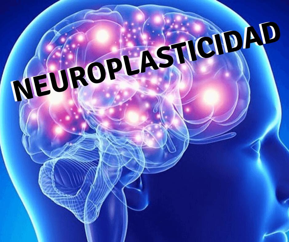 neuroplasticidad ejercicio movimiento